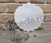Imagine Invitatii nunta 2562 scoică și perlă