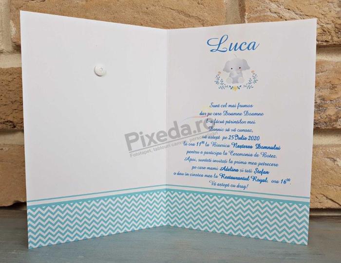 Imagine Invitatii de botez 8027 morișcă albastră și elefănțel