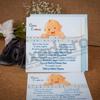 Imagine Invitatii de botez 121 bleo bebeluș