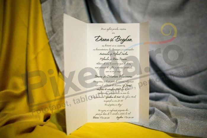 Imagine Invitatii nunta 206 inimioare baloane