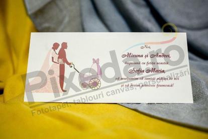 Imagine Mapă de bani nuntă și botez miri și căruț roz 238