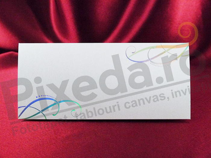 Imagine Mape de bani nunta PZA 10 model grafic argintiu