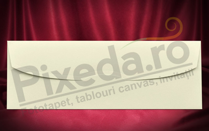 Imagine Plic invitatii nunta z010 crem sidef