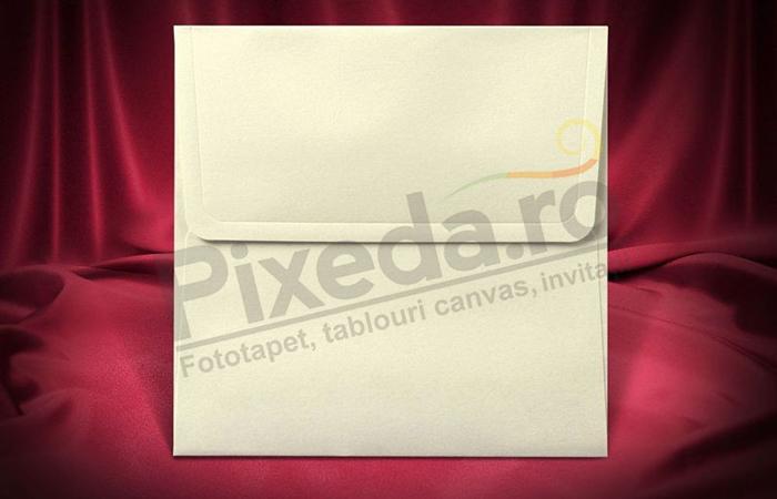 Imagine Plic invitatii nunta z015 pătrat crem mat