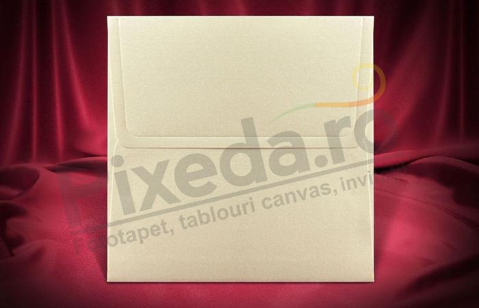 Imagine Plic invitatii nunta z016 pătrat crem sidef