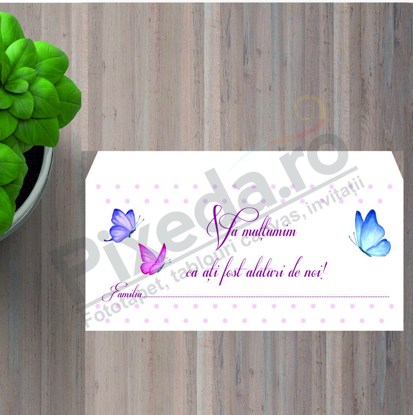 Imagine Plic / Mape de bani nunta PX 11009