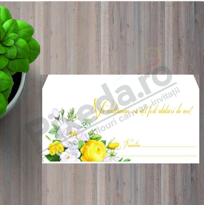 Imagine Plic / Mape de bani nunta PX 11010