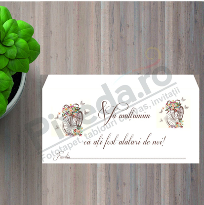 Imagine Plic / Mape de bani nunta PX 11018