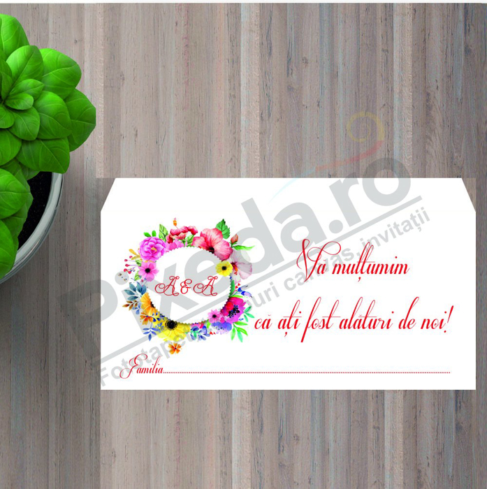 Imagine Plic / Mape de bani nunta PX 11045