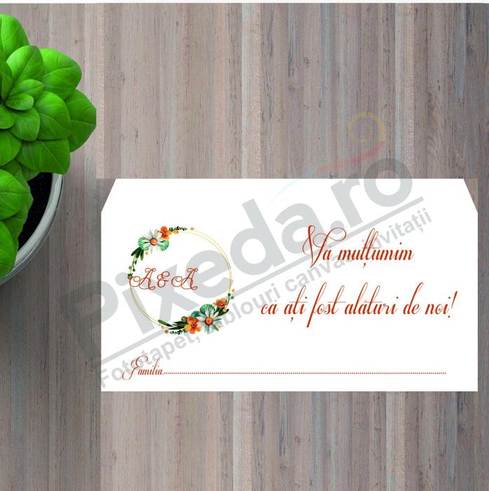 Imagine Plic / Mape de bani nunta PX 11046
