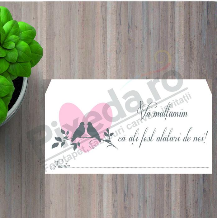 Imagine Plic / Mape de bani nunta PX 11062