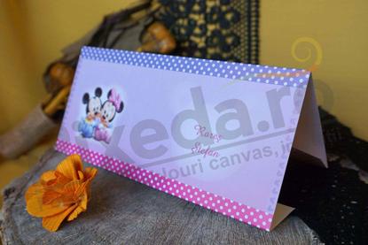 Imagine Mape de bani botez 3629_money Baby Mickey & Minnie