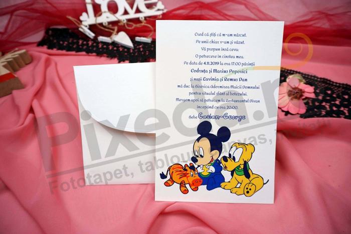 Imagine Invitatii de botez N23_x_M35 Mickey & Pluto