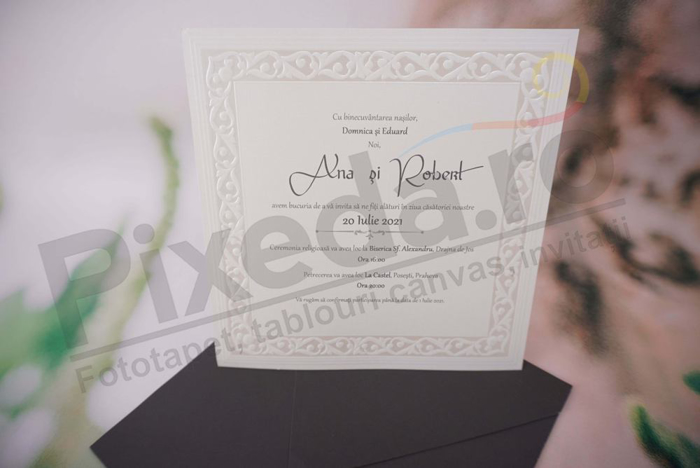 Imagine Invitatii nunta 1116 striații elegante