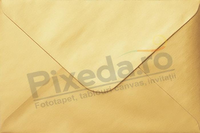 Imagine Invitatii de nunta PX 10043