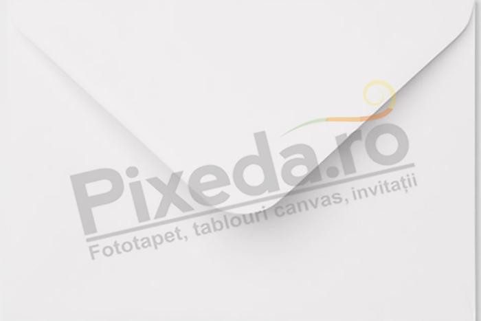 Imagine Invitatii de nunta PX 10067