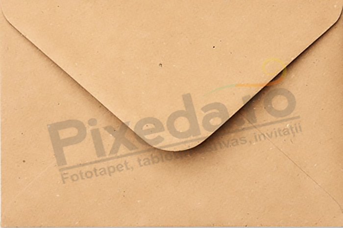 Imagine Invitatii de nunta PX 10069