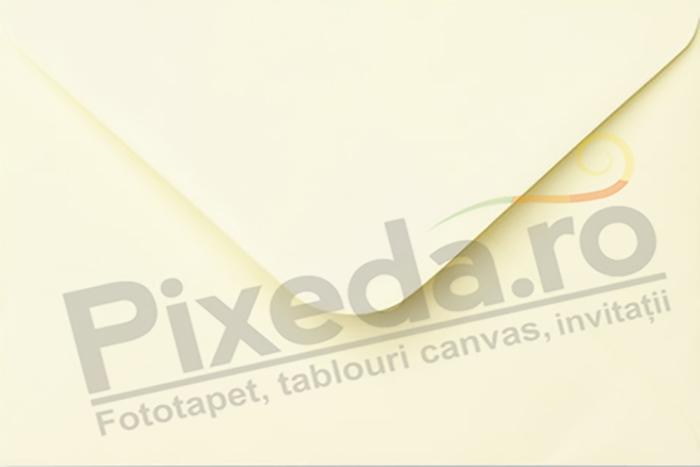 Imagine Invitatii de nunta PX 10075