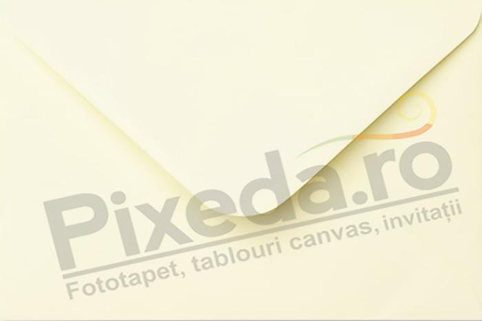 Imagine Invitatii de nunta PX 10076