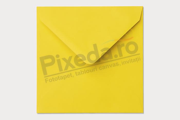 Imagine Invitație de nuntă PX 10011