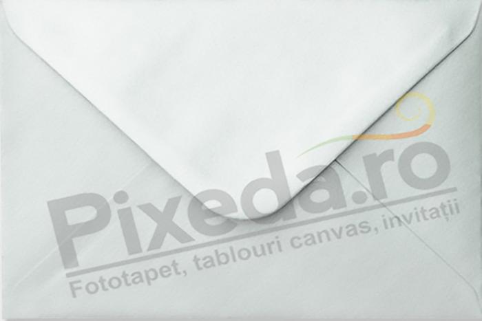 Imagine Invitatie de nunta PX 10014