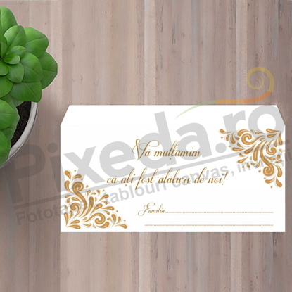 Imagine Plic / Mape de bani nunta PX 11016