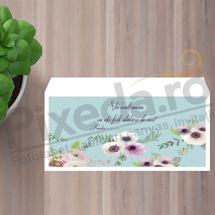 Imagine Plic / Mape de bani nunta PX 11053