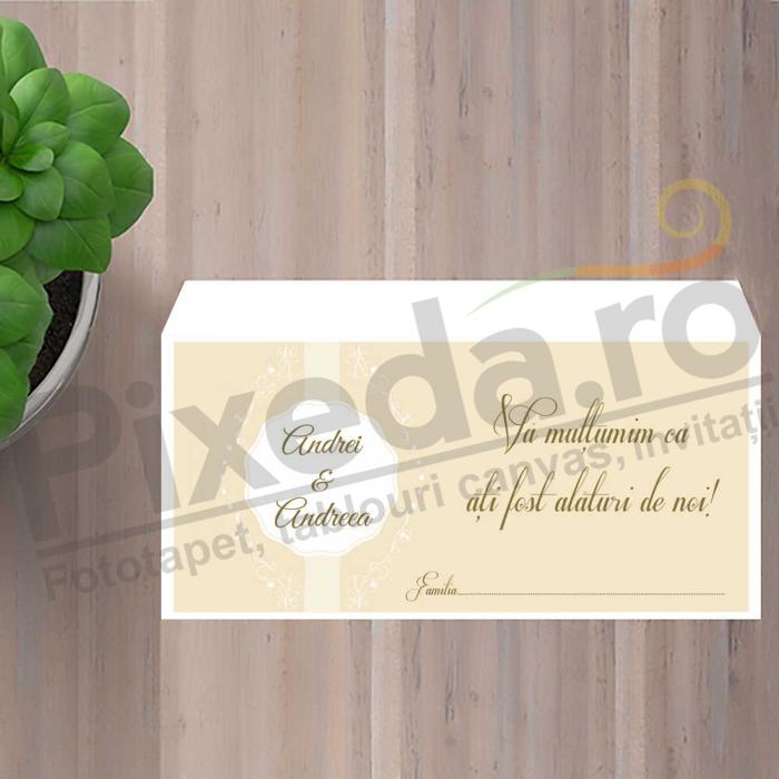 Imagine Plic / Mape de bani nunta PX 11055