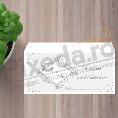 Imagine Plic / Mape de bani nunta PX 11059