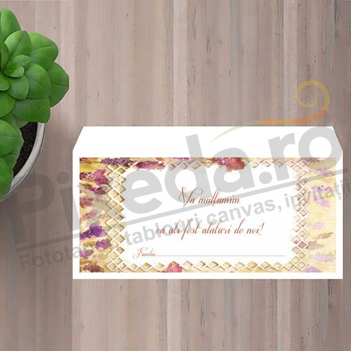 Imagine Plic / Mape de bani nunta PX 11070