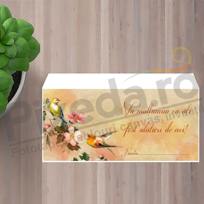 Imagine Plic / Mape de bani nunta PX 11076