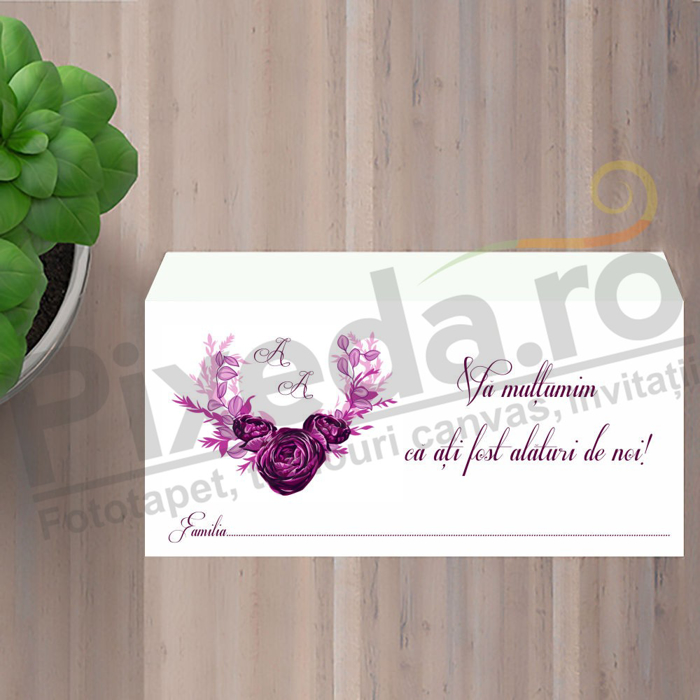 Imagine Plic / Mape de bani nunta PX 11006