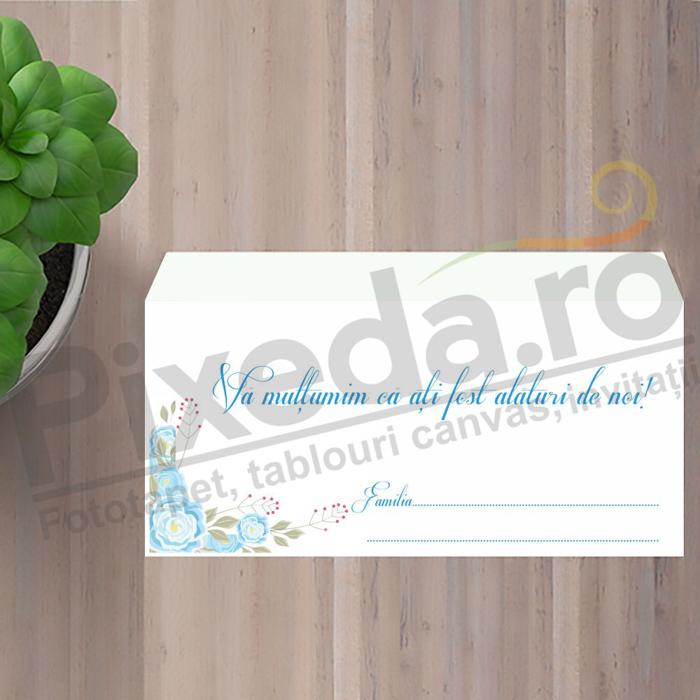 Imagine Plic / Mape de bani nunta PX 11026