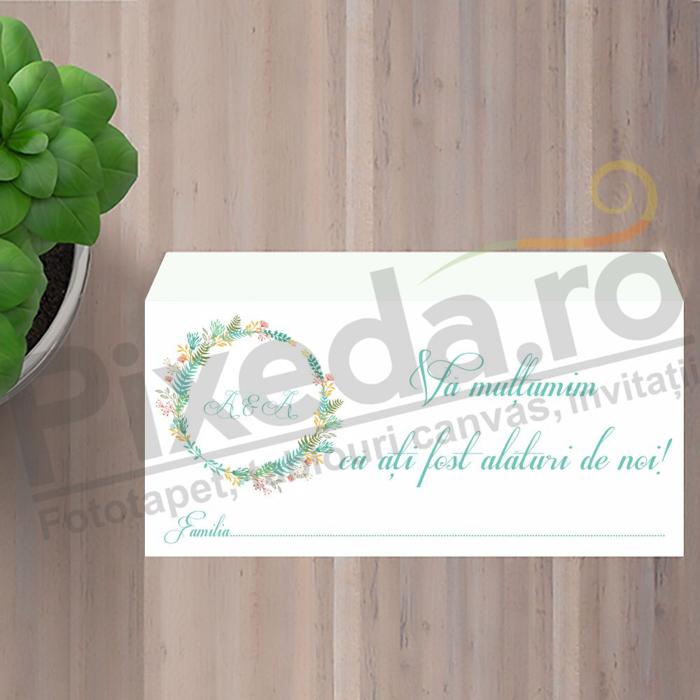 Imagine Plic / Mape de bani nunta PX 11048
