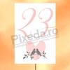 Imagine Numere de mese PX 12062