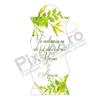 Imagine Etichetă autocolantă cod PX 13028 C