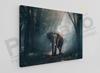 Imagine Tablou canvas animale PX 20017 elefant