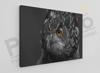 Imagine Tablou canvas animale PX 20019 bufnita