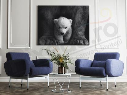 Imagine Tablou canvas animale PX 20020 pui de urs polar