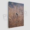 Imagine Tablou canvas animale PX 21019 pasare singuratica