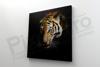 Imagine Tablou canvas animale PX 22004 tigru fioros