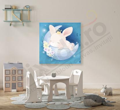 Imagine Tablou canvas camera copii PX 22019 iepuras dormind